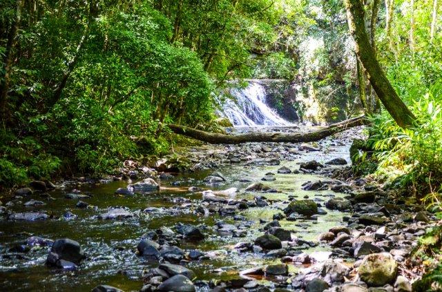 Ecopark Sperry