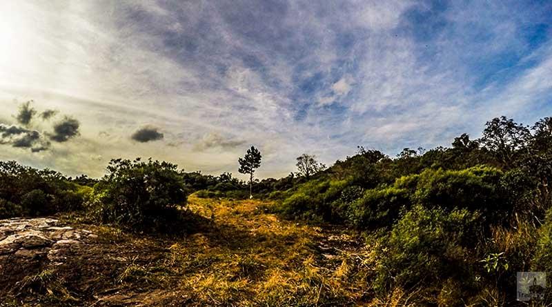 Morro do Tigre