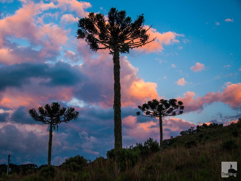 Sunset Aparados da Serra