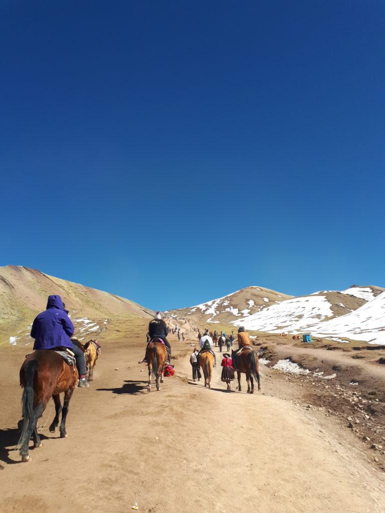 Cavalos transportando pessoas
